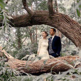 Alter Baum mit großer Gabelung, indem das Brautpaar kuschelnd steht - Junkerhof Wittingen © Hochzeitsfotograf www.hochzeitsverliebt.de